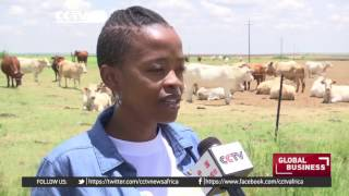 Download South African youth take up farming in numbers Video