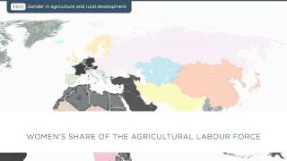 Download Film 1: Gender in Agriculture and Rural Development Video