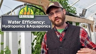 Download Water Efficiency in Hydroponics Video