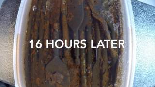 Download Time Lapse - Watching rust fall off using vinegar Video