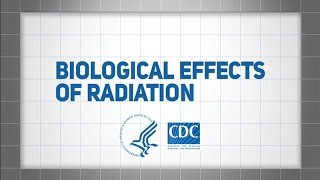 Download Biological Effects of Radiation Video