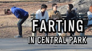 Download FARTING IN CENTRAL PARK Video