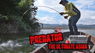 Download Predator By sos Thailand Video
