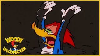 Download Woody Woodpecker Show | Foiled in Oil | Full Episode | Cartoons For Children Video