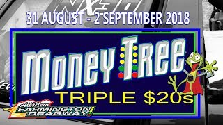 Download Money Tree Triple $20's - Sunday Video