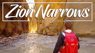 Download Hiking the Zion Narrows - Zion National Park Video