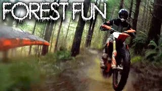 Download Forest Fun / KTM 450 XC / MotoGeo Adventures Video
