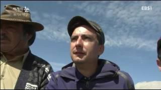 Download 지진 초대형 지진(특히 2011 3 11일본도호쿠 지방 지진) Video