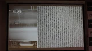 Download 室外機の凍結洗浄 Video