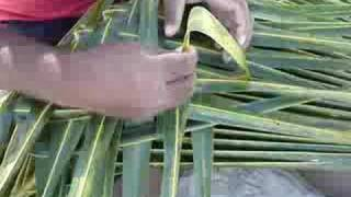 Download Izzy shows us step by step basket weaving! Video