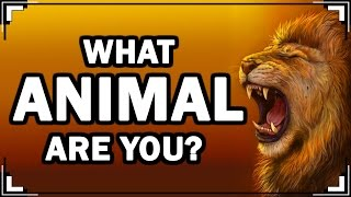 Download What ANIMAL Are You? (Personality Test With Animals) Video