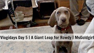 Download Vlogidays Day 5 | A Giant Leap for Rowdy | MsGoldgirl Video