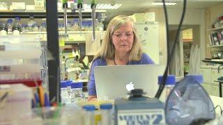 Download Eureka Moments: Professor Helen Skaer Video
