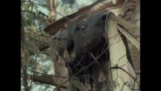 Download Рой (1990) фильм смотреть онлайн Video