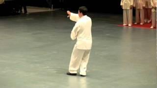 Download 楊式第五代傳人蘇學文-楊式班侯拳 Video