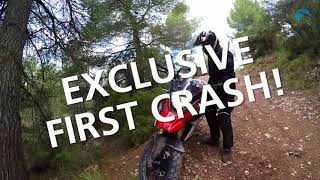 Download REVIEW: 2017 BMW G 310 GS on & off road test with crash Video