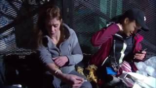 Download W5: OPIOID FENTANYL STREET CRISIS DOCUMENTARY Video