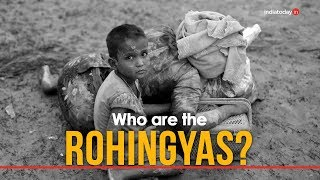 Download Rohingya crisis, explained Video