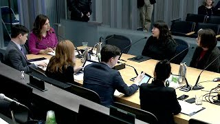 Download Seattle City Council Finance & Housing Committee 2/6/20 Video