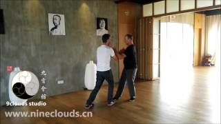 Download Tai Chi Push Hands Fixed Patterns: Patrick & Guillem Video
