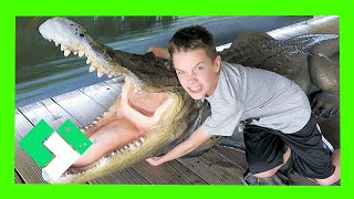 Download 🐊 KID FEEDS LIVE ALLIGATORS AND LIVES! 🐊 (Day 1861) Video