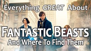 Download Everything GREAT About Fantastic Beasts and Where to Find Them! Video