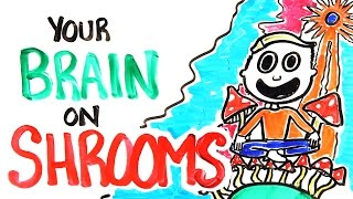 Download Your Brain On Shrooms Video