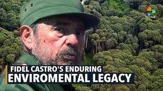 Download Fidel Castro's Enduring Environmental Legacy Video