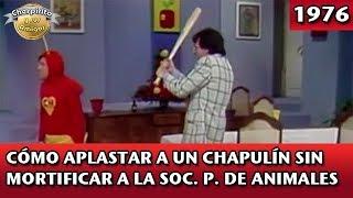 Download El Chapulín Colorado   Cómo aplastar a un Chapulín sin mortificar a la soc. protectora de animales Video