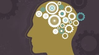 Download Consciousness: How the Brain Creates the Mind Video