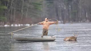 Download Deer Rescue Video