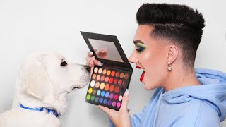 Download Puppy Picks My Makeup! Video