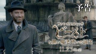 Download 映画『ファンタスティック・ビーストと黒い魔法使いの誕生』予告1【HD】2018年11月23日(金・祝)公開 Video