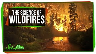 Download The Science of Wildfires Video