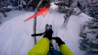 Download Skiing through forest with no mercy! Video