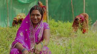 Download Women farmers in India | Economic Empowerment of women through vegetable supply chain in Bihar. Video