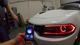 Download 2015 Dodge Charger Scat Pack w/ RGBW LED DRL Boards & RGB Halos w/Bluetooth LED Controller Video