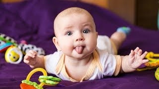 Download HILARIOUS ADORABLE BABIES - Funny Baby Videos (2018) Video