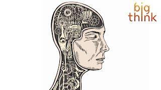 Download Dan Harris: Hack Your Brain's Default Mode with Meditation Video