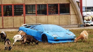 Download 15 Expensive and Exclusive Abandoned Cars Video