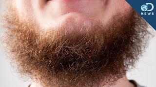 Download Science Says Beards Aren't Sexy Anymore! Video