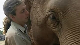 Download Testing Elephants Intelligence | The Zoo Keepers | BBC Video