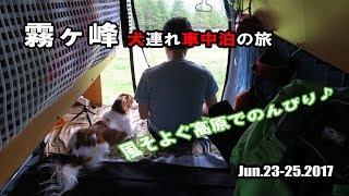Download 【車中泊】 霧ヶ峰 犬連れキャンピングカーの旅  ~風そよぐ車山肩~ Video