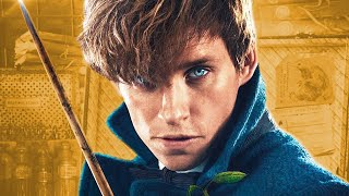 Download The History Of Newt Scamander | Fantastic Beasts Video