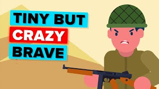 Download The Insanely Crazy Story of a Tiny Soldier Video