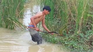Download Net Fishing at Pailin Province - Cambodia Traditional Fishing - Khmer Cast Net Fishing (Part 073) Video