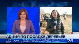 Download Масштабная экологическая акция проходит в Уральске Video
