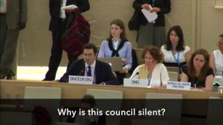 Download Remove Saudi Arabia, China, Venezuela, Cuba from the U.N. Human Rights Council Video