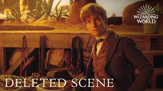 Download Fantastic Beasts and Where to Find Them - DELETED SCENE debut at A Celebration of Harry Potter 2017 Video