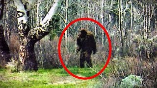 Download 5 Crazy BIGFOOT Sightings Caught on Camera (2016) Video